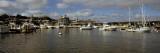 Boats at a Harbor  Oak Bluffs  Martha's Vineyard  Dukes County  Massachusetts  USA