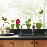 Flowerpots  (Window Decal)
