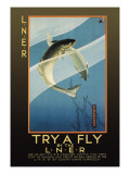 Try a Fly