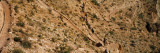 Mule Riders and Hikers on the Trail  South Kaibab Trail  Grand Canyon National Park  Arizona  USA