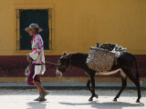 Elderly Woman Walking with Her Donkey