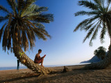 Tourist Reading Book While Sitting on Palm Tree Trunk on Beach  Sinai  Red Sea