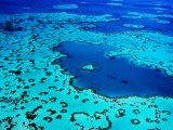 Aerial of Heart-Shaped Reef at Hardy Reef  Near Whitsunday Islands