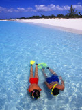 Two People Snorkelling in Blue Water Near Beach