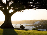 Late Afternoon on Lawn Overlooking Sydney Harbour at Sydney Observatory