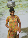 Woman Carrying Water Jar by Lake  Rohet