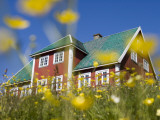 Red House Seen Through Meadow of Yellow Buttercup Flowers