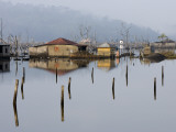 Village Flooded During the Tsunami in 2004  Where the Water Never Went Away