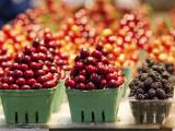 Cherry and Blackberry Punnets at Granville Island Public Market on Johnston St  Granville Island
