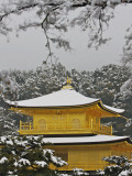 Kinkakuji Temple  the Golden Pavilion Covered in Snow