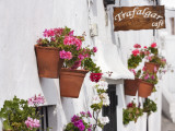 Flowerboxes on Walls