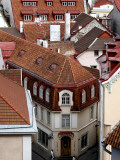 Old Town Rooftops from Toompea (Castle Hill)