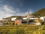 Vineyards and Village of Gabrje  Vipava Valley Wine Region