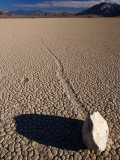Ractrack Playa Mysterious Racing Rock  Most Likely Driven by Wind When Playa Is Wet
