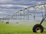 Agricultural Irrigation System in Moses Lake Region