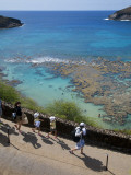 Family Heading to Coral Reef at Hanauma Bay