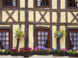 Half-Timbered Facade with Floral Window Boxes in Lyons-La-Foret