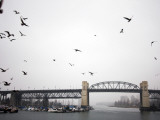 View of Burrard Bridge from Granville Market