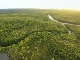 Aerial View of River Near Northern Tip of Cape York