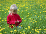 Girl Sitting in Dandelion Field Near Sr Radovna
