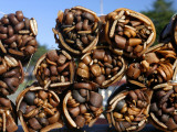 Bundles of Dried Kelp (Cochayuyo) for Sale at Seaside Stall