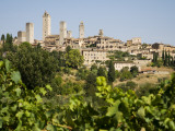 Towers of San Gimignano with Grapevines Producing Vernaccia Di San Gimignano Wine in Foreground