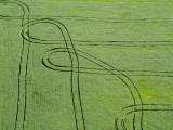 Aerial View of Tractor Patterns in Field