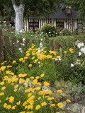 Exuberant Garden and Half-Timbered Cottage in Marais Vernier Region
