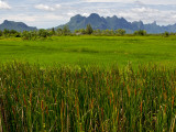 Peaks in Khao Sam Roi Yot National Park across Fields