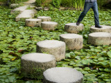 Man Crossing Stepping Stones across Soryu-Ike Pond in Naka Shin'En Garden