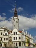 Plague Column and Ratusz (Town Hall) at Rynek (Market Square)