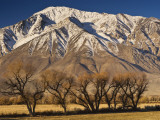 Mt Tom in Sierra Nevada in Winter from Round Valley Near Bishop