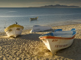 Panga Boats on Beach Along Bahia De San Felipe at Sunrise