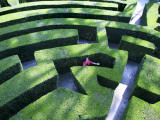 Man Lost in Maze in Gardens of Villa Pisani Near Stra