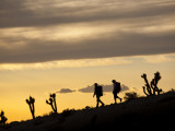 Young Man and Woman Hiking Through Desert at Sunset