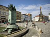 Arion Fountain and Holy Trinity Column in Distance at Horni Namesti