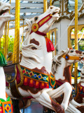 Carousel Horses at Yerba Buena Center for the Arts