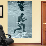 Ali Underwater Mural