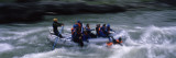 Tourists Rafting in The River  Snake River  Wyoming