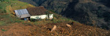 House at The Mountainside  San Rafael De Mucuchies  Merida State  Andes  Venezuela
