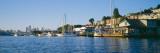 Houseboats in a Lake  Lake Union  Seattle  King County  Washington State