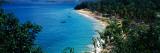 Trees On The Beach  Arapito Beach  Mochima National Park  Anzoategui State-Sucre State  Venezuela