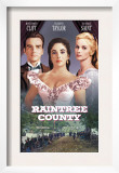 Raintree County  Montgomery Clift  Elizabeth Taylor  Eva Marie Saint  1957