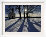 Trees Cast their Shadows Next to the Chapel Near Feldkirchen  Southern Germany