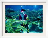 Diver Dressed as Santa Claus Feeds Fish as Part of Christmas Celebrations  Aquarium in Kuala Lumpur