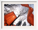 """The Gates"" are Shown in Central Park in New York with Flowing Fabric the Color of a Sunrise"