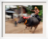 A Cambodian Boy Rides on His Buffalo Through a Village
