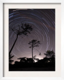 Polar Star Trails Circle around the Pole Star in Fonte-Da-Telha  Portugal