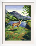 Deer Standing Near a Lake