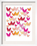 Warm Butterfly Pattern